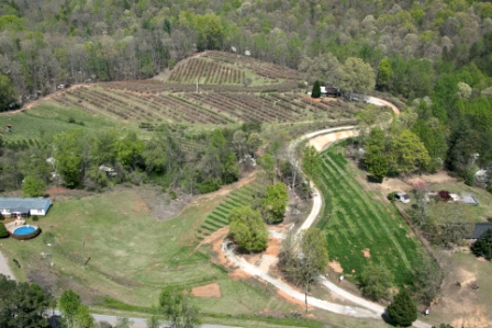Aerial photo of The Happy Berry farm taken during early spring/dogwood season